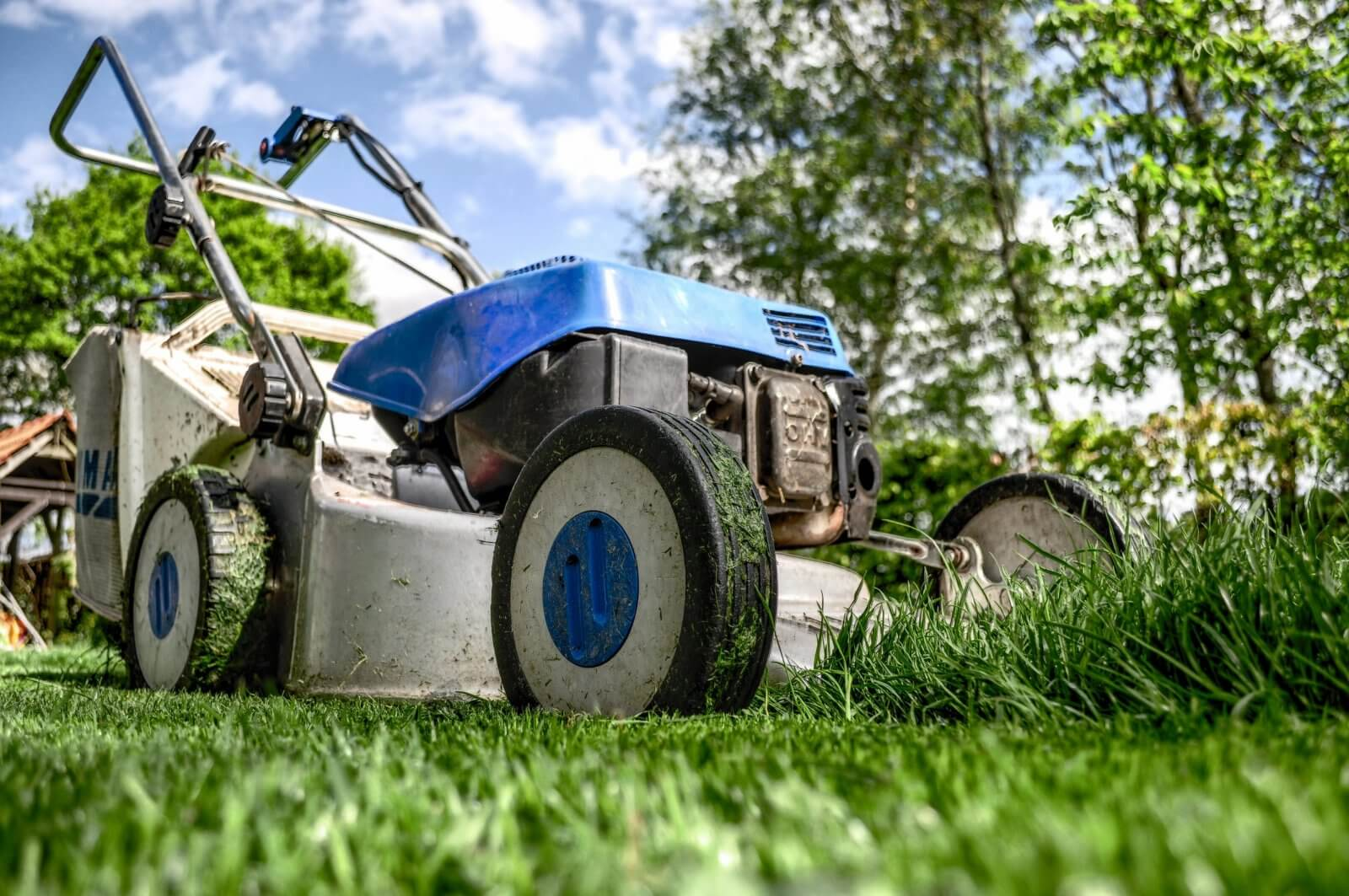 How to Generate Leads for Your Landscaping Business